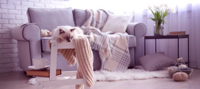 decoratiuni-pentru-o-casa-confortabila